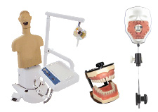 Dental Teaching Aids